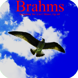 DigitalMusic - Brahms Symphony No. 1 (Complete Music Album)
