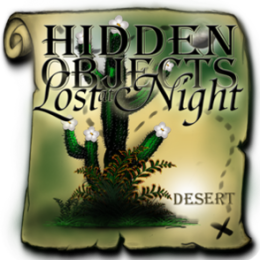 Hidden Objects Lost at Night - Desert
