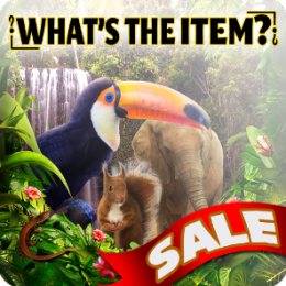 What's the Item? - Journey into the Wilderness