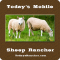 Todays Mobile Sheep Rancher