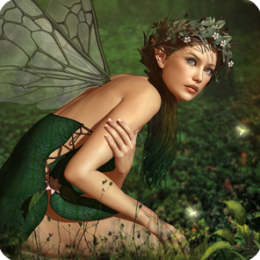 Hidden Garden Fairies