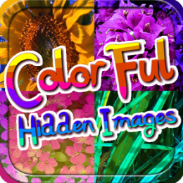 Colorful Hidden Images