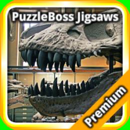 Dinosaur Fossils Jigsaw Puzzle