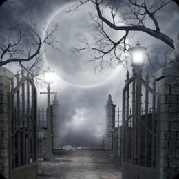 Hidden Garden Darkness