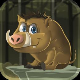 Wild Pig Endless Run