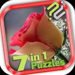 Puzzle Pack: Valentine Roses