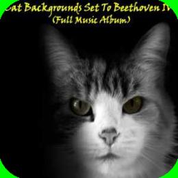 MusicAlbum - Beethoven IV (Full Classical Music Album)