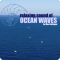 Relaxing Sound of Ocean Waves: Music for Relaxation, Meditation, Deep Sleep, Yoga