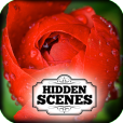Product Image. Title: Hidden Scenes - Mothers Day