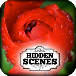 Hidden Scenes - Mothers Day