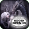 Hidden Scenes - Thrones and Dragons