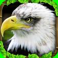 Product Image. Title: Eagle Simulator