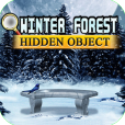 Product Image. Title: Hidden Object - Winter Forest