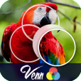Product Image. Title: Venn Birds: Overlapping Jigsaw Puzzles