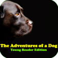 Product Image. Title: AudioBook - The Adventures of a Dog