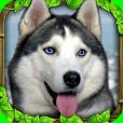 Product Image. Title: Stray Dog Simulator