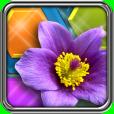 Product Image. Title: HexLogic - Gardens
