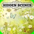 Product Image. Title: Hidden Scenes - Spring Garden