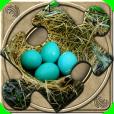 Product Image. Title: FlipPix Jigsaw - Nesting
