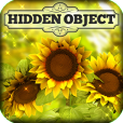 Product Image. Title: Hidden Object - Country Corner