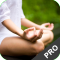 Yoga Workouts - Pro Edition (The Best Yoga Workouts Video Tutorials)