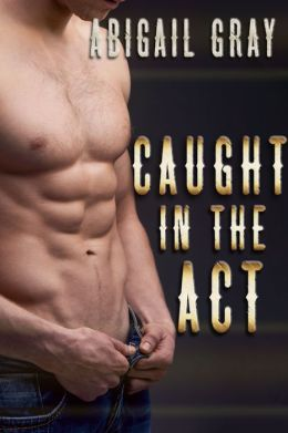 Caught in the Act (MFM Voyeur Erotica)