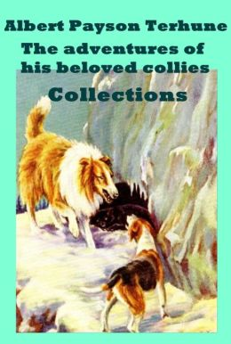 Albert Payson Terhune 7 Novels - Lad: A Dog Black Caesar's Clan : A Florida Mystery Story Bruce Further Adventures of Lad His Dog Super Women Buff: A Collie and other dog-stories