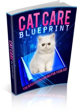 Cat Care Blueprint Be A Success At Taking Care Of Your Cat