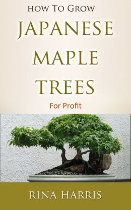 How To Grow Japanese Maple Trees For Profit : All Information Abour Care, Types, Variety, Seeds, Planting, Pruning, Propagation and Bonsai