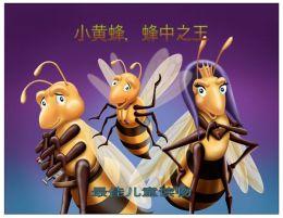 小黄蜂,蜂中之王