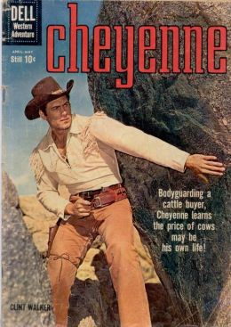 Cheyenne Number 15 Western Comic Book