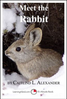 Meet the Rabbit: A 15-Minute Book for Early Readers