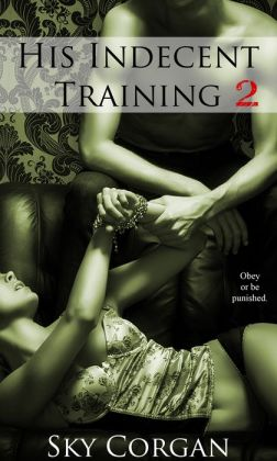 His Indecent Training 2 (BDSM Erotic Romance)