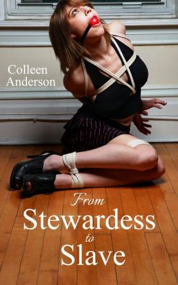 From Stewardess to Slave (Rape Erotica and Forced Sex, #2)