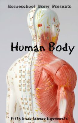 Human Body (Fifth Grade Science Experiments)