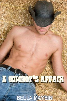 A Cowboy's Affair