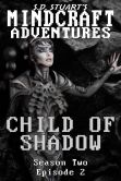 Book Cover Image. Title: Child of Shadow, Author: Steve DeWinter