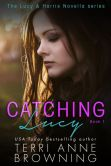 Book Cover Image. Title: Catching Lucy, Author: Terri Anne Browning