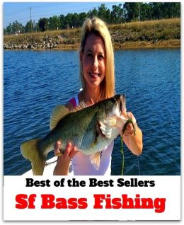 Best of the best sellers sf bass fishing angling for Best fishing books