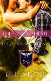 Book Cover Image. Title: The Other Side of Envy, Author: C. L. Stone