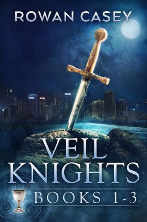 Veil Knights Box Set 1