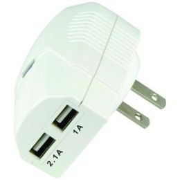 Dual USB Home Charger for iPad in White
