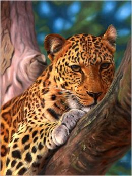 Leopard in a Tree - 500 piece puzzle