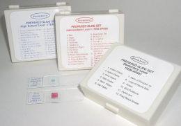 C & A Scientific PS02 - Prepared Slide Sets - Intermediate Level