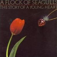 The Story of a Young Heart [Bonus Tracks]