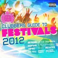 Ministry Of Sound: Clubber's Guide To Festivals