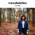 CD Cover Image. Title: Ivy Tripp, Artist: Waxahatchee