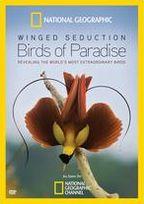 National Geographic: Winged Seduction - Birds of Paradise