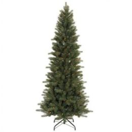 Blue Spruce Instant Shape 90