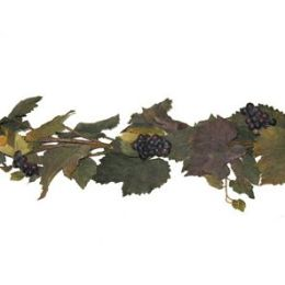 Atticks S9181 6' Grape Leaf Garland With Grapes